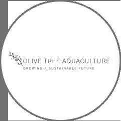 olive tree aquaculture